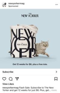 38 New Yorker Instagram ad
